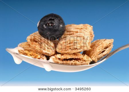 Spoon Of Shredded Wheat Cereal With Blueberry