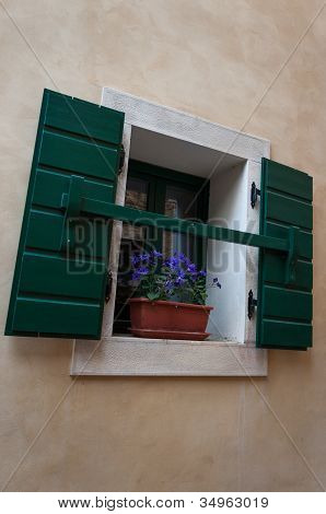 Window With Flower And Shutters