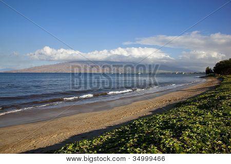 Beach At Kihei