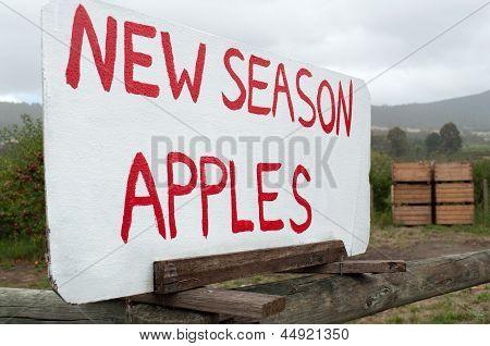 Sign For Roadside Apple Sales
