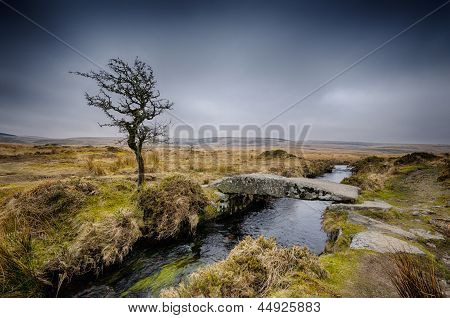 Winter auf Dartmoor