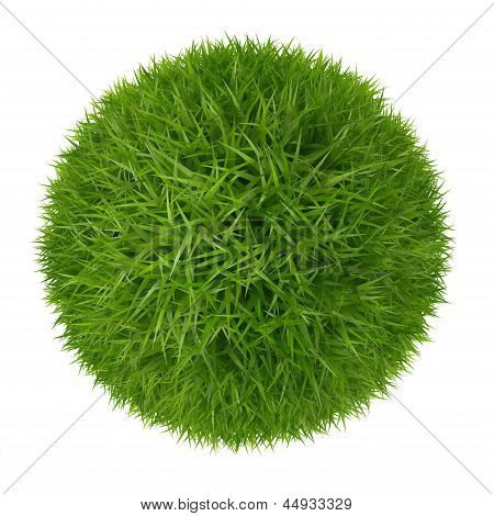 Green Grass Ball  Isolated On White Background