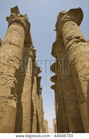 Open lotus columns