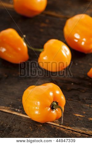 Organic Hot And Spicy Habanero Peppers