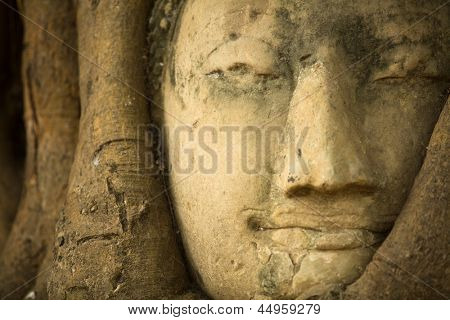 Close-up head of Buddha in Wat Mahathat, Ayutthaya, Thailand.