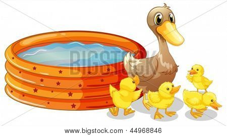 Illustration of an inflatable pool at the back of the five ducks on a white background