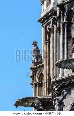 Gargoyle In Reims
