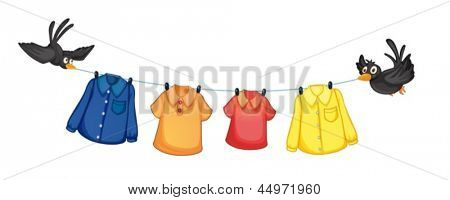 Illustration of the four different clothes hanging with birds on a white background