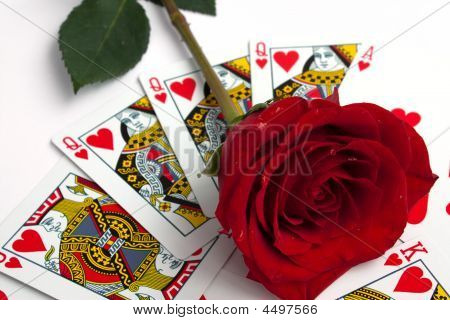 Rose Over Cards