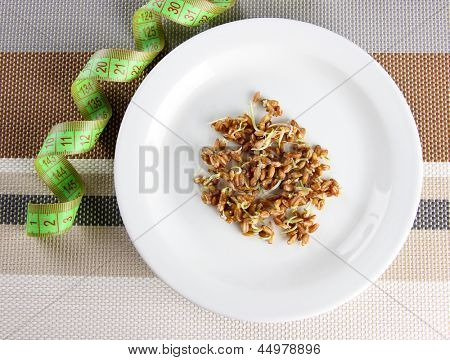 Wheat germs on plate and measuring tape, close up