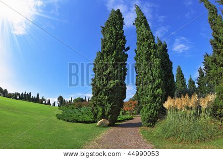 The most romantic landscape park garden in Italy. Comfortable walking path goes through the green grassy lawn. Photo taken fisheye lens