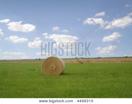 Lonely Hay Bales