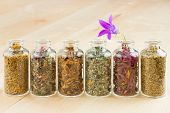 Healing Herbs In Glass Bottles, Herbal Medicine