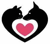 picture of fondling  - cat and dog in the heart on a white background - JPG