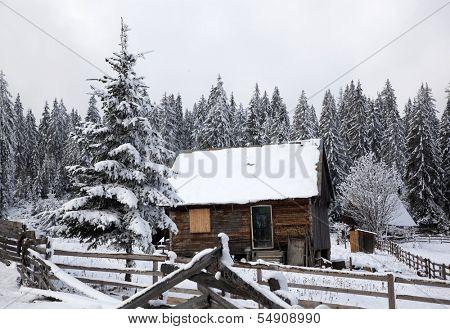 Spectacular winter landscape