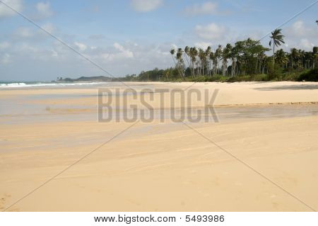 Seaside In Bintan