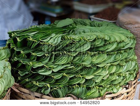 Stack Of Betel Leaves (piper Betle) In Old Town Bangalore.