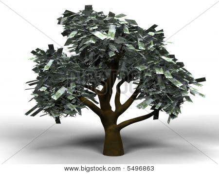 Money Tree Euro