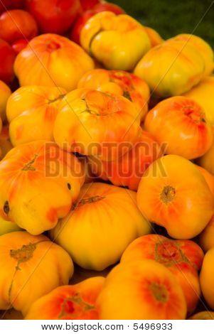 Farmers Market Yellow Tomatoes
