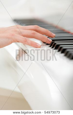 Close up of hand playing piano. Concept of music and art