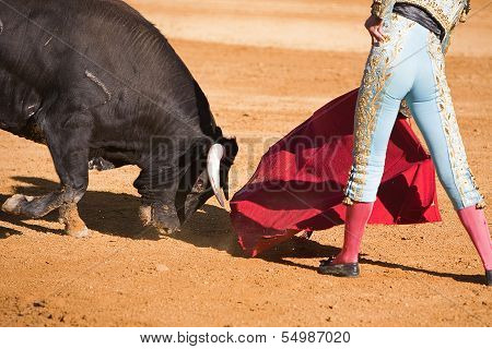 Bullfighter with the Cape in the Bullfight