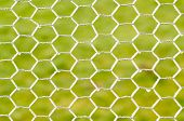 picture of chicken-wire  - White frozen chicken wire against a green grass background - JPG