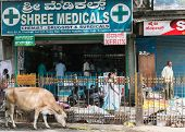 Pharmacy In The Old Town of Bengaluru.