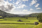 image of swales  - Field barns at Gunnerside - JPG