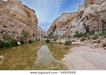 Magnificent canyon, creek and picturesque waterfall. Ein Avdat National Park in the Negev desert