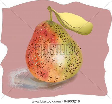 Useful food for health pear on a pink background