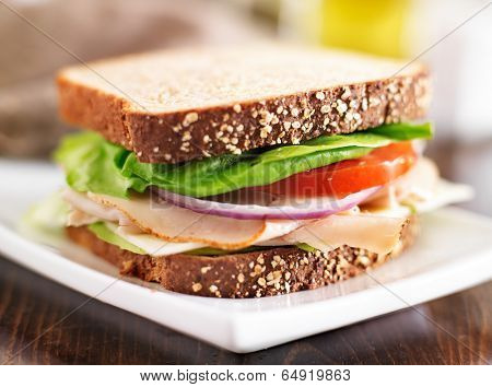 deli meat sandwich with turkey, tomato, onion, and lettuce