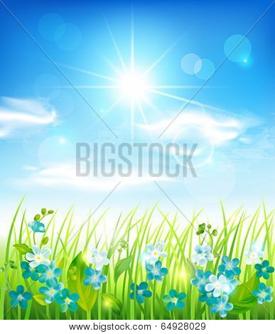 Sunny background with grass and flowers. Vector eps 10.