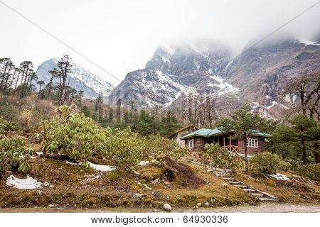 Yumthang Valley or Valley of Flowers, North Sikkim