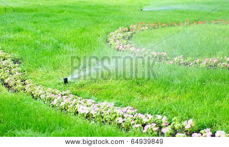 sprinkler water on the grass