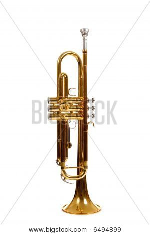 Brass Trumpet On A White Background