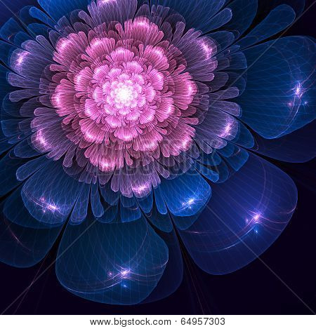 Pink And Blue  Fractal Flower