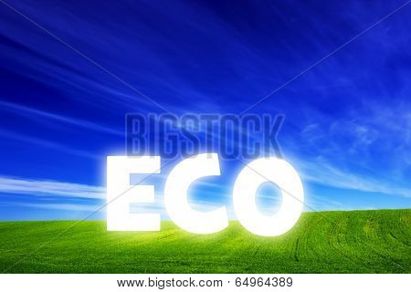 Spring field of fresh green grass with glowing Eco caption. Blue sunny sky. Ecology, environment, renewable energy concepts
