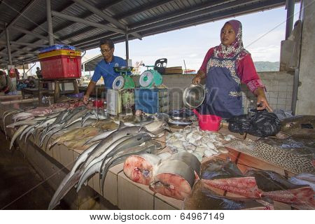 KOTA KINABALU, MALAYSIA - MAY 12 2014: Sharks at fish market. Environmental problem of trade in endangered species including Hammerhead Shark killed illegally for their fins.