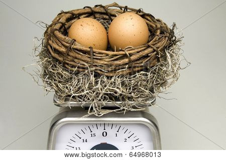 Weighing Your Nest Egg