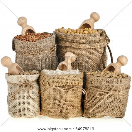Corn kernel seed meal and grains in bags collection isolated on a white background