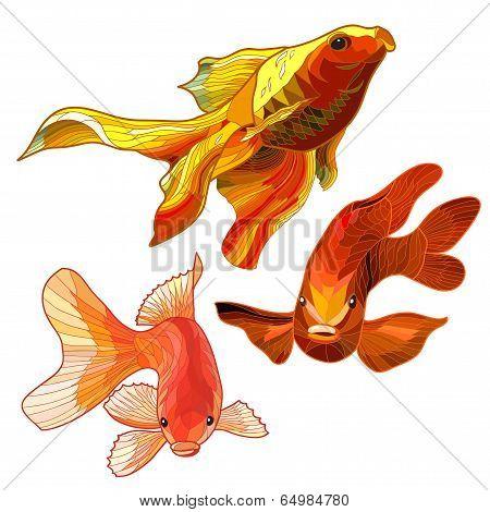 Set of Gold Fish