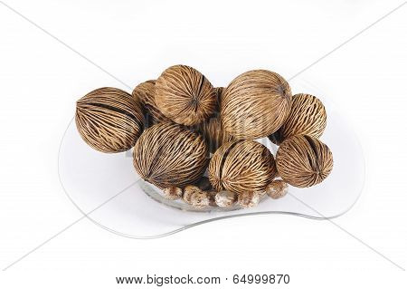 Castor Bean And Cerbera Odollam Seed For Decoration