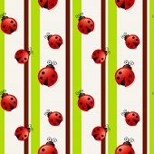 picture of ladybug  - Seamless background with ladybugs and stripes - JPG