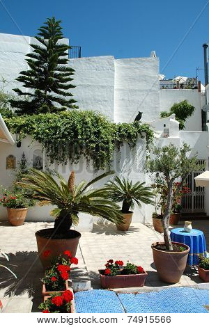 Cosy courtyard in Spain Andalusia