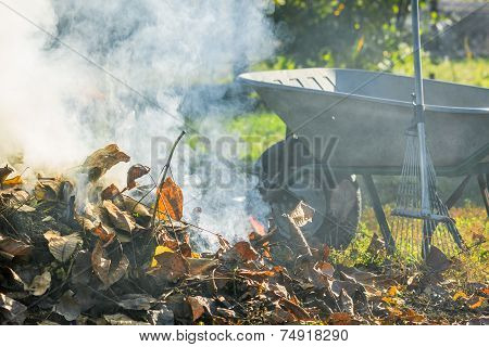 Burning Autumn Leaves In The Sunny Garden