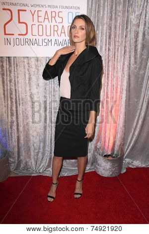 LOS ANGELES - OCT 28:  Dawn Olivieri at the 25th Courage In Journalism Awards at the Beverly Hilton Hotel on October 28, 2014 in Beverly Hills, CA