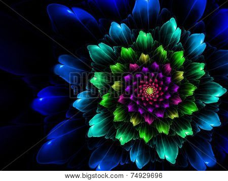 Decorative fractal flower illustration