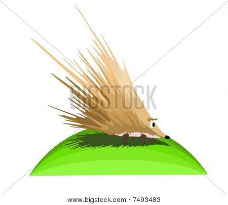 happy smiling hedgehog, illustration