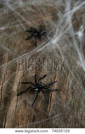 Cobweb with spiders on wooden background