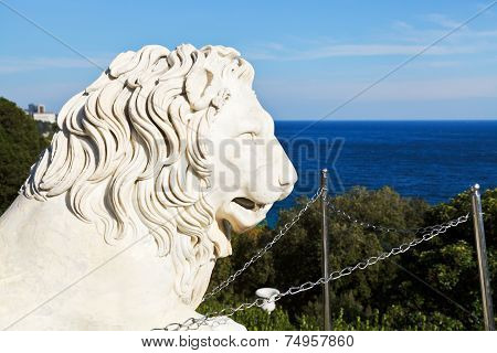 Black Sea And Medici Lion Near Vorontsov Palace